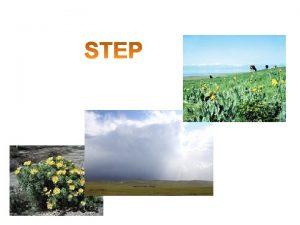 Step jest to rwnina pozbawiona drzew rzek i