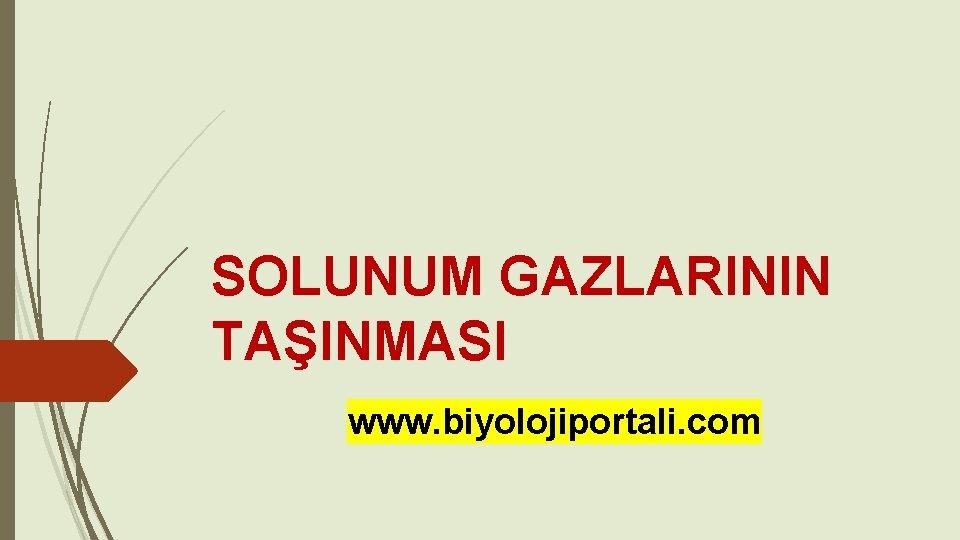 SOLUNUM GAZLARININ TAINMASI www biyolojiportali com SOLUNUM GAZLARININ