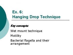Ex 6 Hanging Drop Technique Key concepts Wet