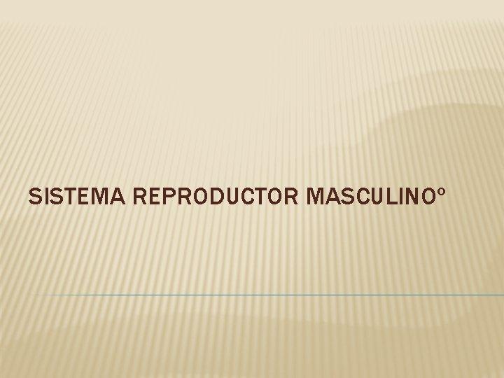 SISTEMA REPRODUCTOR MASCULINO APARATO REPRODUCTOR MASCULINO FUNCIONES El