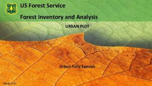 US Forest Service Forest Inventory and Analysis URBAN