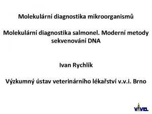 Molekulrn diagnostika mikroorganism Molekulrn diagnostika salmonel Modern metody