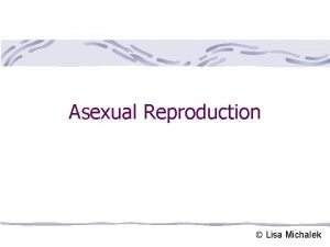 Asexual Reproduction Lisa Michalek Asexual Reproduction Results from