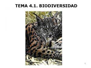TEMA 4 1 BIODIVERSIDAD 1 Biodiversidad es la