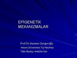 EPGENETK MEKANZMALAR Prof Dr Asuman Sungurolu Ankara niversitesi