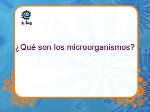 Qu son los microorganismos Los microbios Los microbios