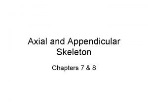 Axial and Appendicular Skeleton Chapters 7 8 Axial