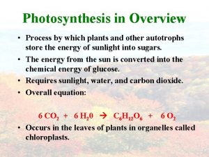 Photosynthesis in Overview Process by which plants and