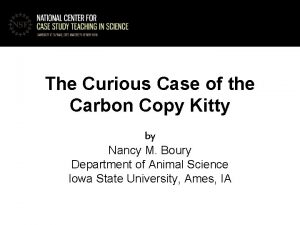 The Curious Case of the Carbon Copy Kitty