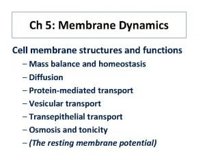 Ch 5 Membrane Dynamics Cell membrane structures and