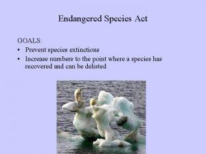 Endangered Species Act GOALS Prevent species extinctions Increase