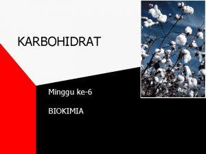 KARBOHIDRAT Minggu ke6 BIOKIMIA KARBOHIDRAT Mengapa nasi sagu
