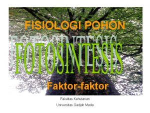 FISIOLOGI POHON Faktorfaktor Fakultas Kehutanan Universitas Gadjah Mada