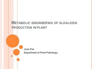 METABOLIC ENGINEERING OF ALKALOIDS PRODUCTION IN PLANT Juan