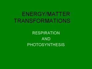 ENERGYMATTER TRANSFORMATIONS RESPIRATION AND PHOTOSYNTHESIS RESPIRATION Used by