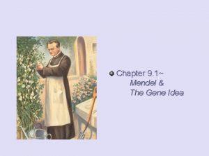 Chapter 9 1 Mendel The Gene Idea Mendelian