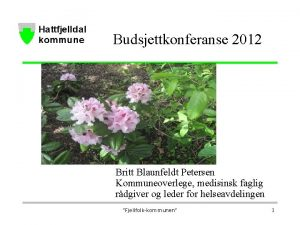 Budsjettkonferanse 2012 Britt Blaunfeldt Petersen Kommuneoverlege medisinsk faglig