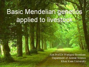 Basic Mendelian genetics applied to livestock Asst Prof