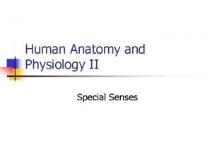 Human Anatomy and Physiology II Special Senses All