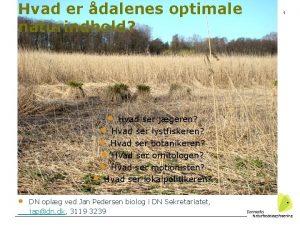 Hvad er dalenes optimale naturindhold Hvad ser jgeren