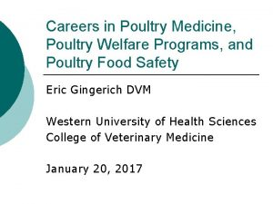 Careers in Poultry Medicine Poultry Welfare Programs and