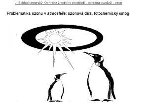 J Schlaghamersk Ochrana ivotnho prosted ochrana ovzdu ozon