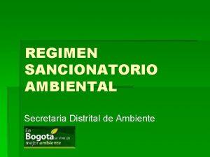 REGIMEN SANCIONATORIO AMBIENTAL Secretaria Distrital de Ambiente CONSTITUCION