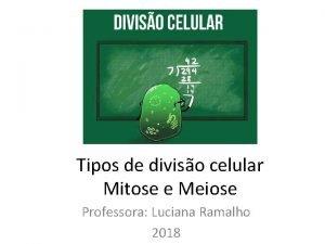 Tipos de diviso celular Mitose e Meiose Professora