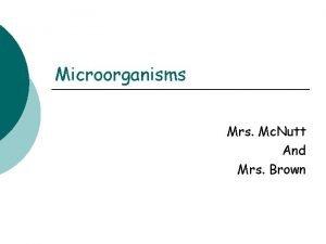 Microorganisms Mrs Mc Nutt And Mrs Brown Essential