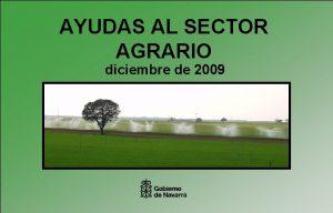 AYUDAS AL SECTOR AGRARIO diciembre de 2009 AYUDAS