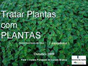 Tratar Plantas com PLANTAS Andr Henriques da Silva