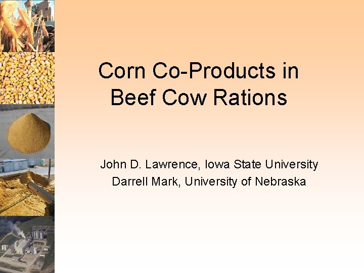 Corn CoProducts in Beef Cow Rations John D