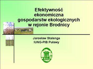 Efektywno ekonomiczna gospodarstw ekologicznych w rejonie Brodnicy Jarosaw