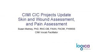 CIMI CIC Projects Update Skin and Wound Assessment