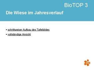 Bio TOP 3 Die Wiese im Jahresverlauf schrittweiser