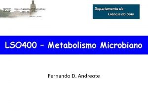 LSO 400 Metabolismo Microbiano Fernando D Andreote Metabolismo