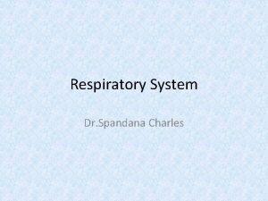 Respiratory System Dr Spandana Charles The Respiratory System