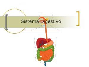 Sistema Digestivo Sistema Digestivo n Digesto e sistema