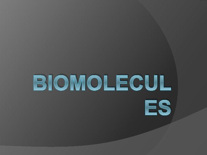 BIOMOLECUL ES WHAT ARE BIOMOLECULES Biomolecules is any