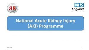 National Acute Kidney Injury AKI Programme 03112020 1