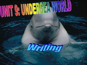 Hello Im a sperm whale Hello Im a