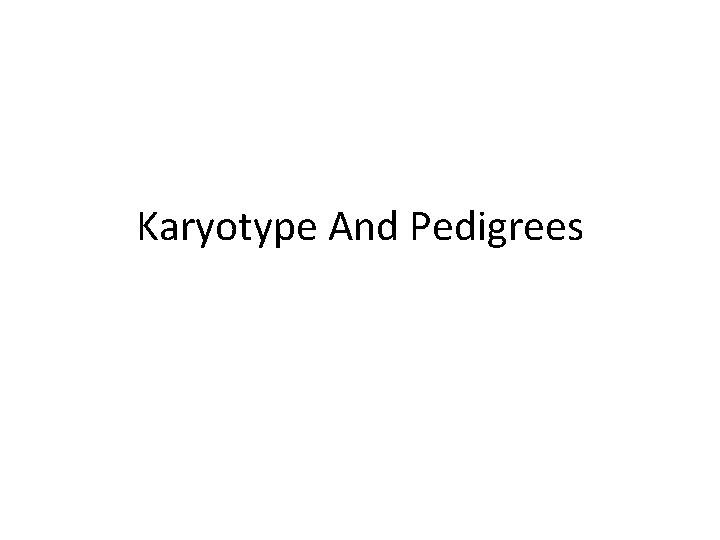 Karyotype And Pedigrees What is a Karyotype Chromosome