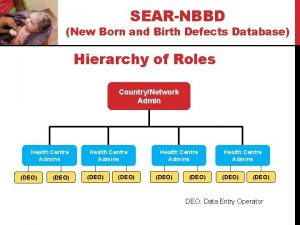 SEARNBBD New Born and Birth Defects Database Hierarchy