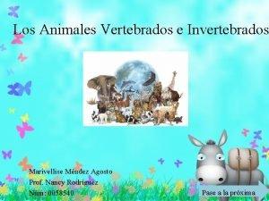 Los Animales Vertebrados e Invertebrados Marivellise Mndez Agosto