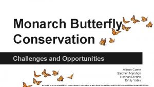 Monarch Butterfly Conservation Challenges and Opportunities Allison Cowie