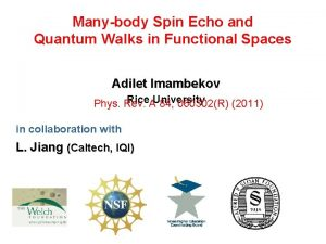 Manybody Spin Echo and Quantum Walks in Functional