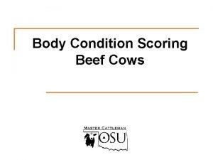 Body Condition Scoring Beef Cows Body condition score