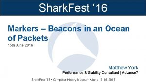 Shark Fest 16 Markers Beacons in an Ocean