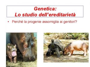 Genetica Lo studio dellereditariet Perch la progenie assomiglia