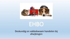 EHBO Deskundig en vakbekwaam handelen bij afwijkingen Wat